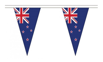 Norway Triangle Bunting 12 flags on this 5 meter Long Bunting