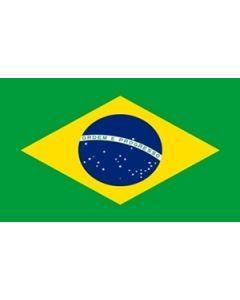 Brazil Flag (150x240cm)