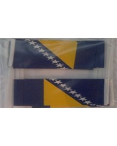 Bosnia and Herzegovina Toothpick Paper Flags (30x48mm)