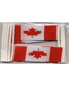 Canada Toothpick Paper Flags (30x48mm)