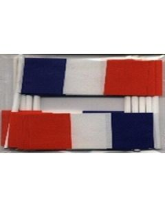 France Toothpick Paper Flags (30x48mm)