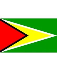Guyana Flag (90x150cm)