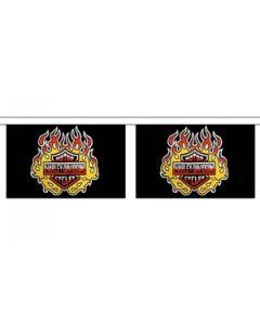 Harley Davidson Buntings 9m (30 flags)