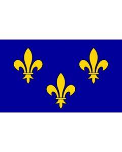 Ile-de-France Flag (90x150cm)