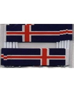 Iceland Toothpick Paper Flags (30x48mm)