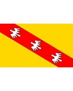 Lorraine Flag (90x150cm)