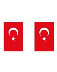 Turkey Buntings 9m (30 flags)