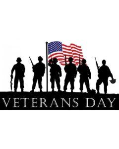 Veterans Day Flag (90x150cm)